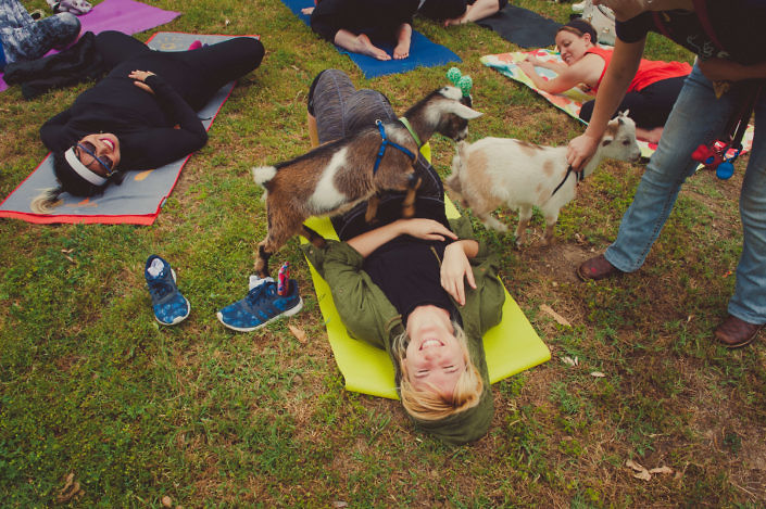 Goat Yoga in Betty Davis Park